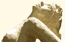 """Détail d'""""Antigone"""" : profil du visage"""