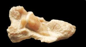 Sculpture en albâtre en taille directe